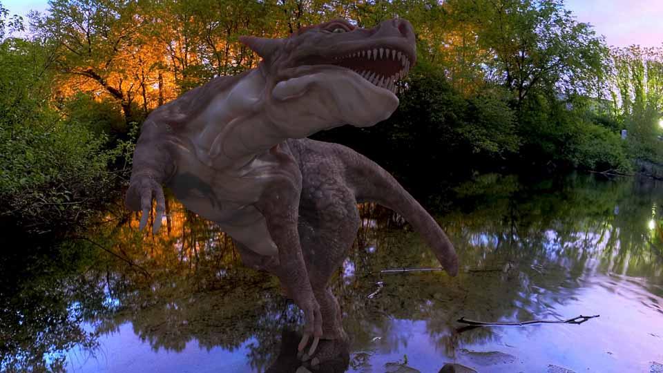 rex01.jpg