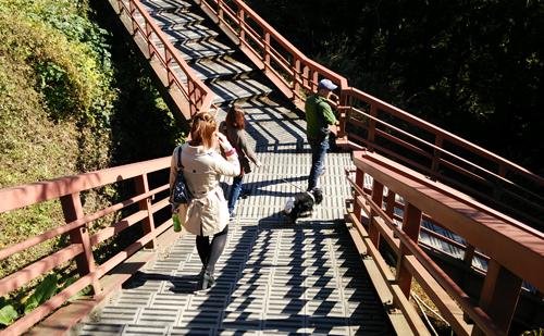 滝まで階段1