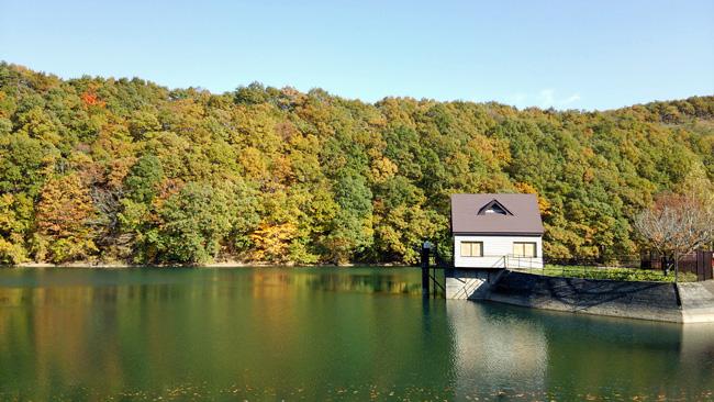湖畔の景色1311