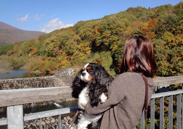 橋の上でニコさん抱っこ
