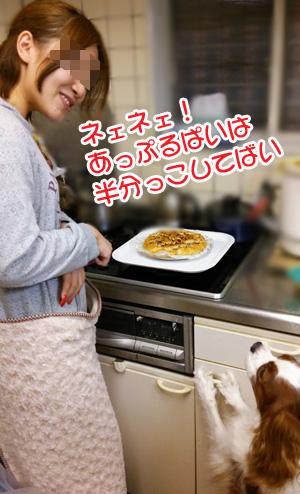 パイ談合201310