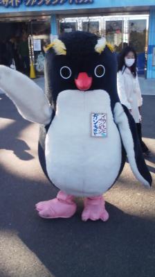 ペンギンのマスコット