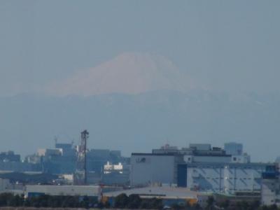 葛西臨海公園から見える富士山