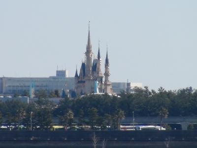 葛西臨海公園から見える東京ディズニーランド