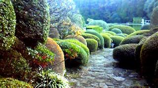 11月21日 庭園