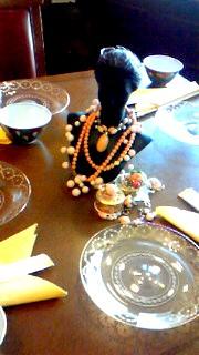 12月26日 珊瑚色テーブル