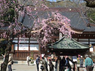 2010 4.8 深大寺