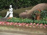 神代植物公園 4.8 その3