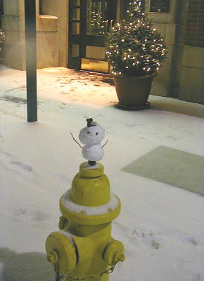 traveling snowboy2