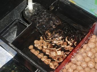 ウールの撤去された上部濾過槽