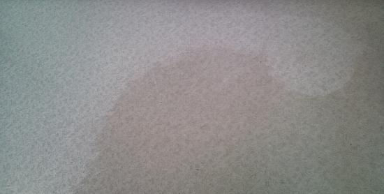 H22年5月25日 4-E床 洗浄前、洗浄後
