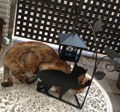 ダブル猫シルエット