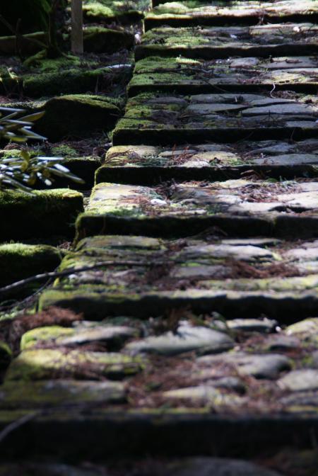 慈眼堂へ向かう石畳の山道