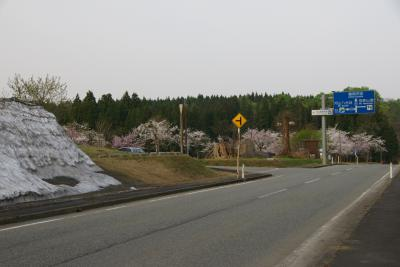 国民休暇村付近の道路