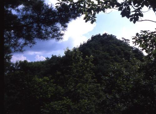 日本ピラミッド葦嶽山