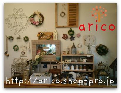 arico4.jpg