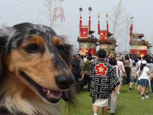 亀崎祭1P1050151