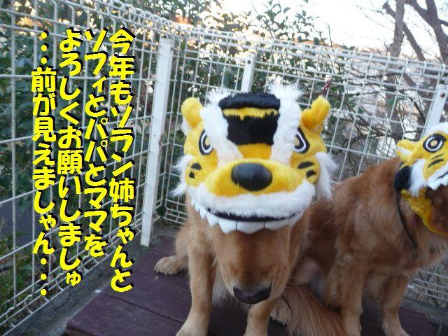106_20100101182157.jpg