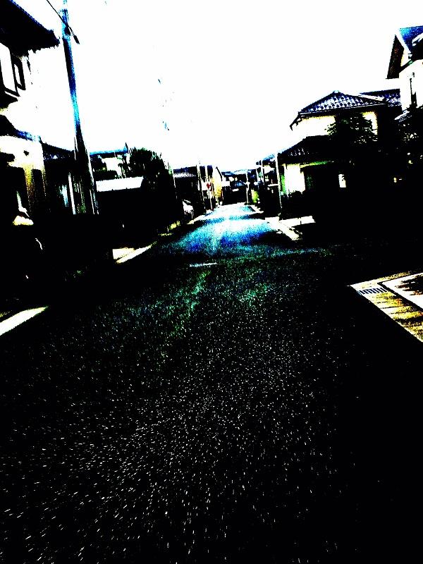 DSC_0508@.jpg