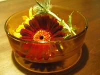 ちゃぶ台の花