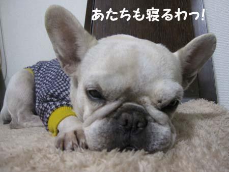 IMG_3197.jpg