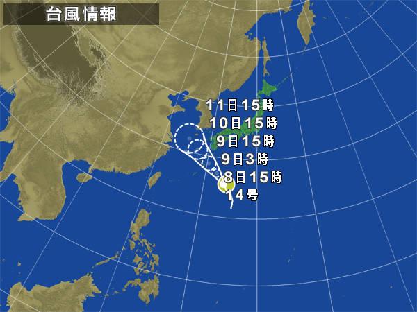 typha[1]