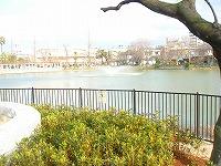 DSC06815-万代池公園