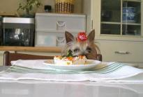 みゆとケーキ