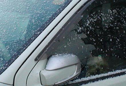 初 冠 雪 ?