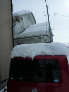 雪みあげる