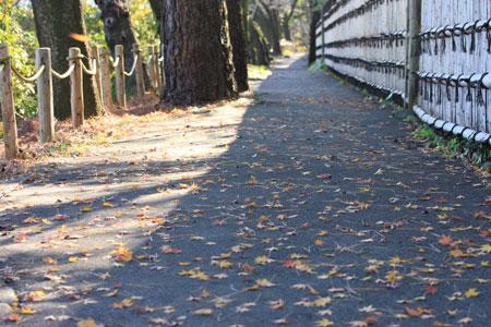 0912散歩道