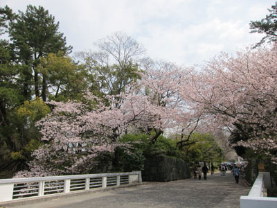 1004駿府公園3