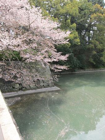 1004駿府公園2
