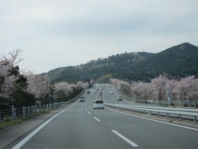 1004伊勢への道2