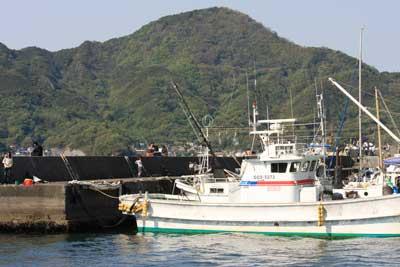 1005淡島