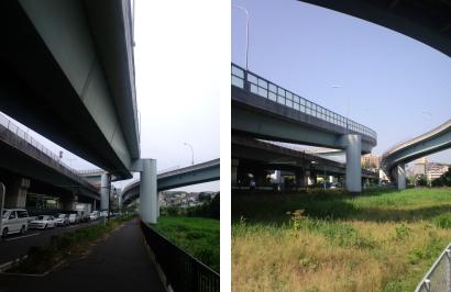 20100625.jpg