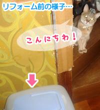 20100902_2.jpg