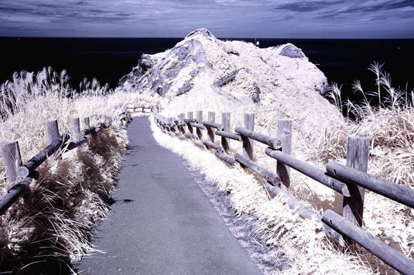 とにかく歩きます。こんな岬の先端までとか。あ赤外