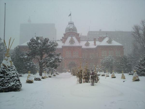 ケータイカメラ、雪天のときでもいい感じではないか!