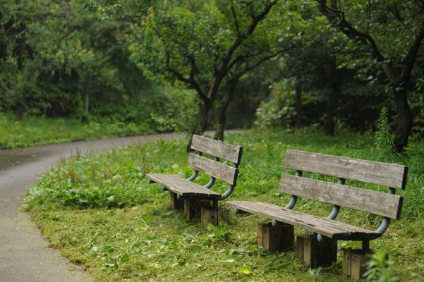 梅園とては有名な公園。今時期はただのお散歩コース