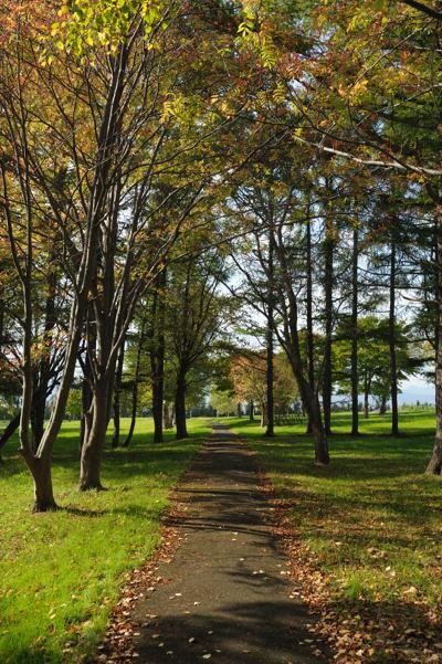 秋の散歩道。平和が一番