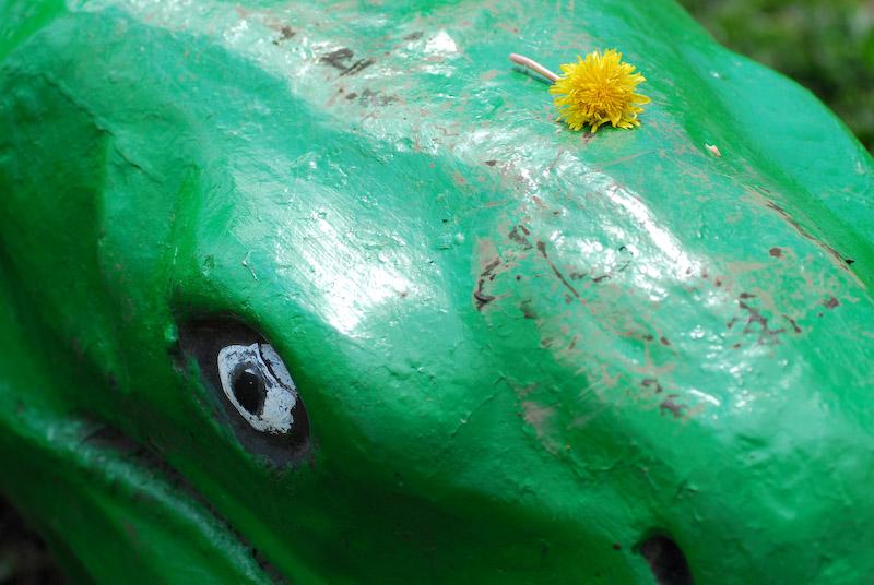 恐竜の上にたんぽぽ?