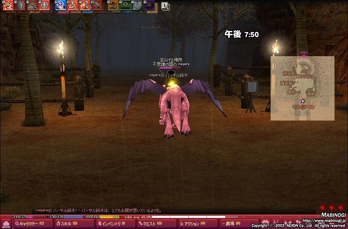 mabinogi_2011_07_12_012.jpg