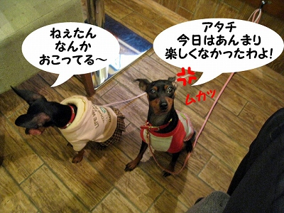 IMG_3262.jpg