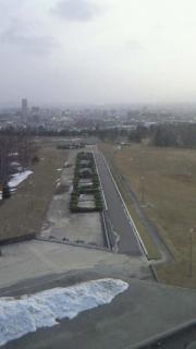 百年記念塔からの景色