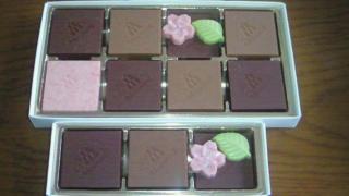 チョコレート中