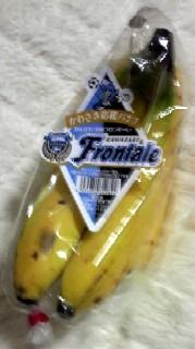 川崎応援バナナ