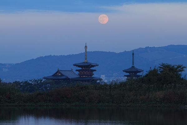 薬師寺 満月