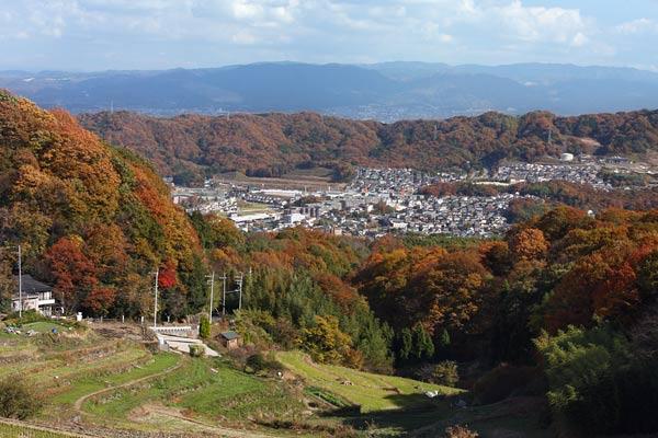 生駒山 紅葉1