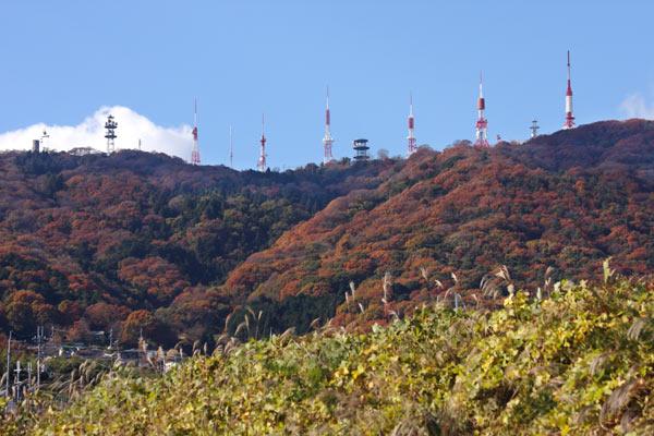 生駒山 紅葉3